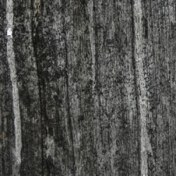 wood-texture-stained